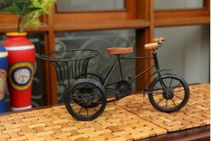 Metal Basket Rickshaw